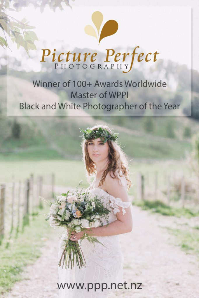 Showcase the talent of Palmerston North wedding photographer Binh Trinh