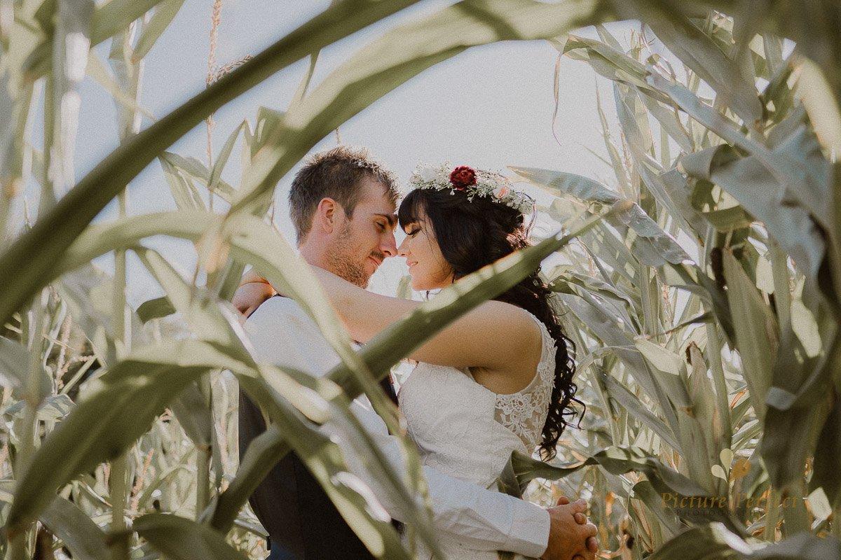 Palmerston North Wedding Photographer With Ashleigh 0892
